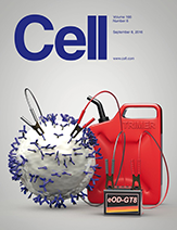 Cell cover 8 September 2016